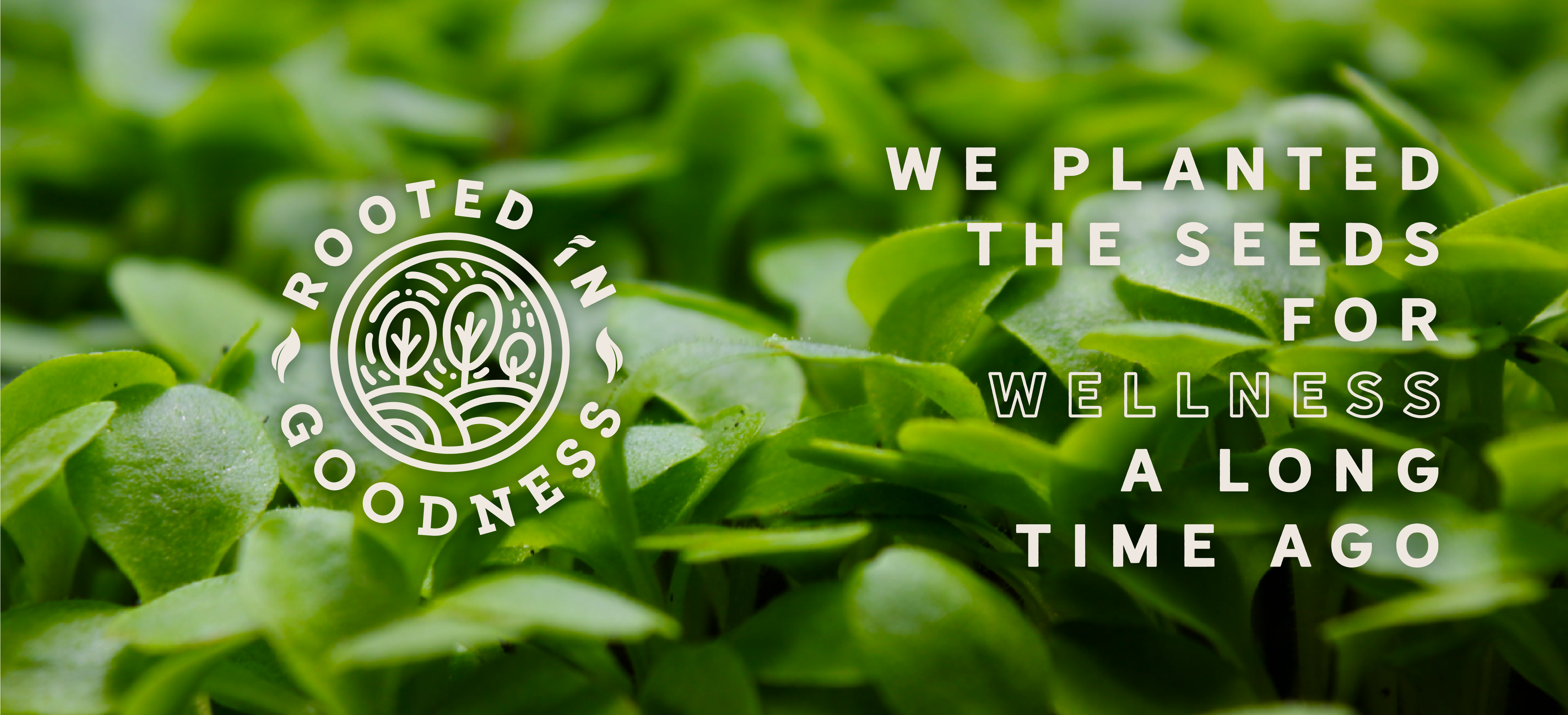 Rooted in Goodness. We planted the seeds for wellness a long time ago.